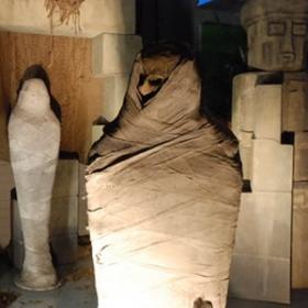Momie crâne 192cm