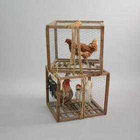 Cage avec poules 47cm