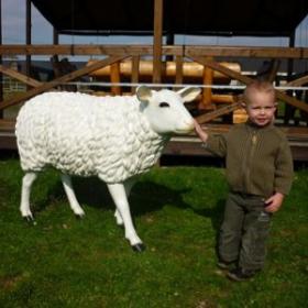 Mouton 88cm