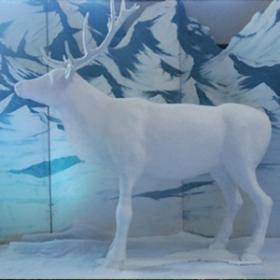 Renne blanc 200cm
