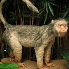 Singe Gibbon 93cm