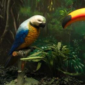Statue perroquet 160cm