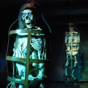 Squelette cage 170cm