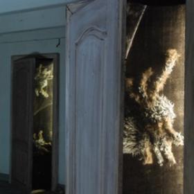 Porte avec araignées 200cm