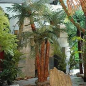 3 palmiers sur île