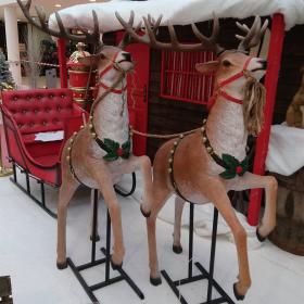 Rennes du Père Noël 180cm