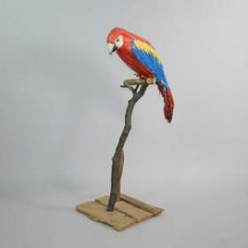 Perroquet 88cm