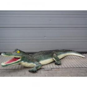 Crocodile 210m