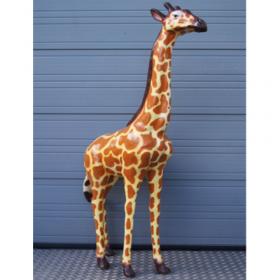Girafe 207cm