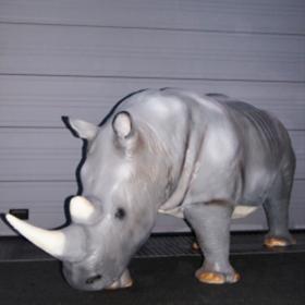 Rhinocéros 390cm
