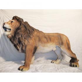 Lion rugissant 70cm