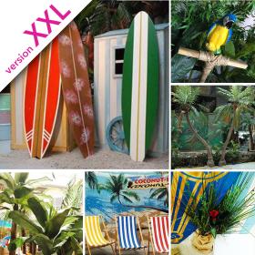Décopack Tropiques XL