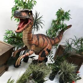 Sweetpack Dinosaure