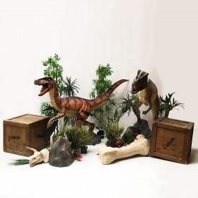 Sweetpack Dinosaure XL