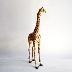 Girafon 236cm