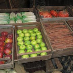 Caisse de fruits et légumes 50cm