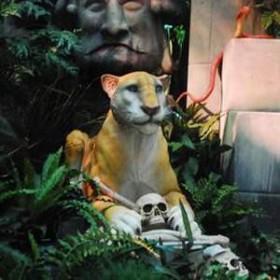 Lionne 69cm