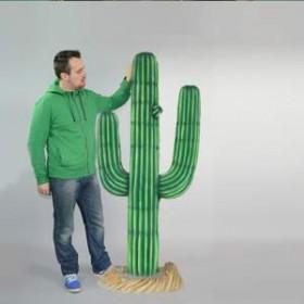 Cactus en résine